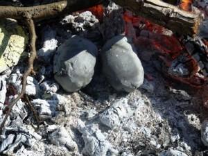 quail-fire