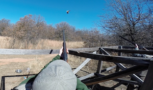 Oklahoma Pheasant Shoot – February 7, 2015